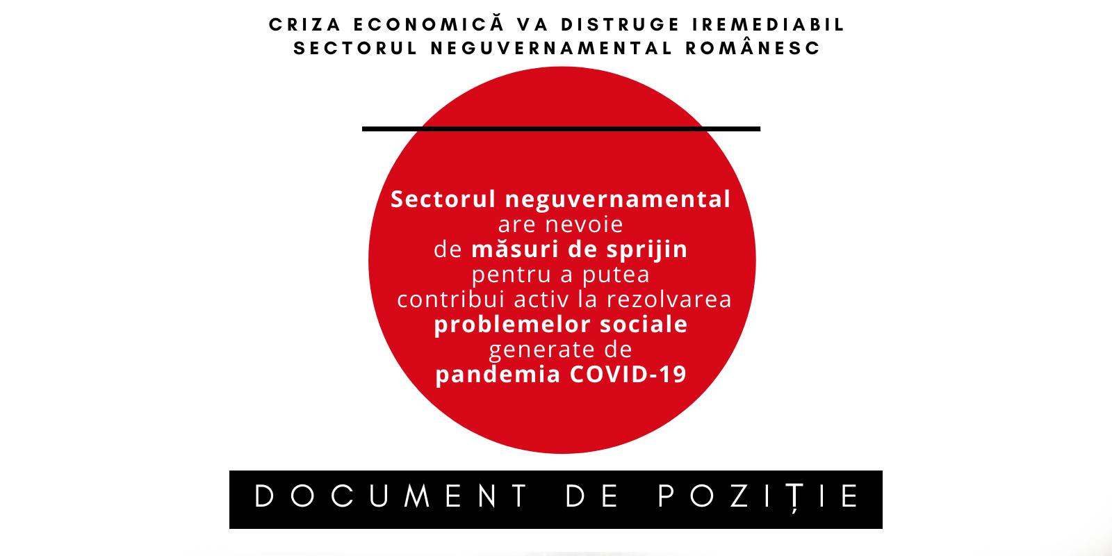 Criza economică va distruge iremediabil sectorul neguvernamental